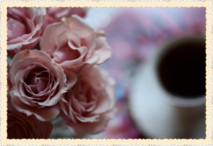 rose vinets